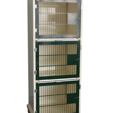 Cages Cat
